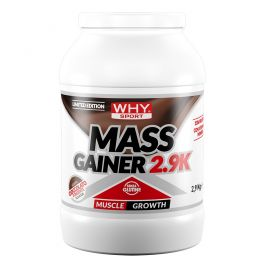 Why Sport Mass Gainer 2,9 kg LIMITED EDITION